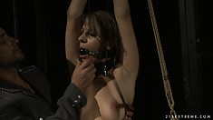 Bound slave gets gagged and torture with butterfly nipple clamps