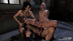 The wild girls suck and fuck that throbbing shaft eager to find intense pleasure