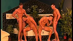 Insatiable young gay stallions can't wait to get satisfied in a foursome