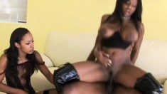 Two stunning ebony girls get it on with a naughty hung tiger