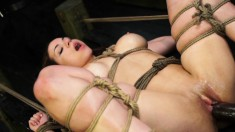 Bondage slut with big hooters Kylie Rogue gets banged deep and rough