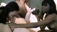Lucky White Stud Has Three Exciting Black Chicks Sharing His Long Rod