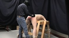 Innocent submissive gets his ass spanked and takes a vicious bone in the tailpipe