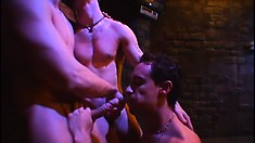 Two stud masters unstrap the slave from the wall and have a gay three way in the dungeon