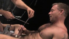 Uninhibited Stud Is Eager To Try Sticking His Pinkie Into His Dick